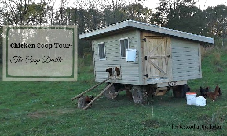 The Coop Deville: A mobile chicken coop