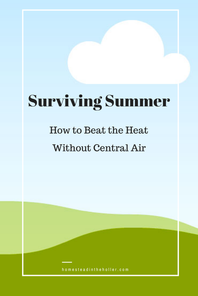 Surviving Summer: How to beat the heat without central air