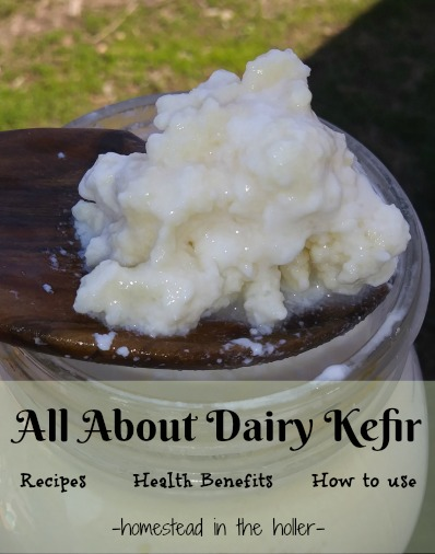 All about Dairy Kefir