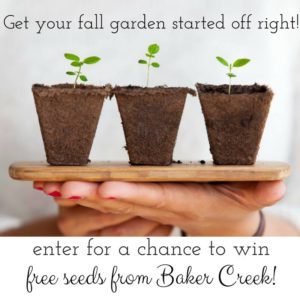 Bakers Creek Fall Garden Seed Giveaway