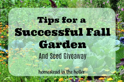 Tips for a successful fall garden