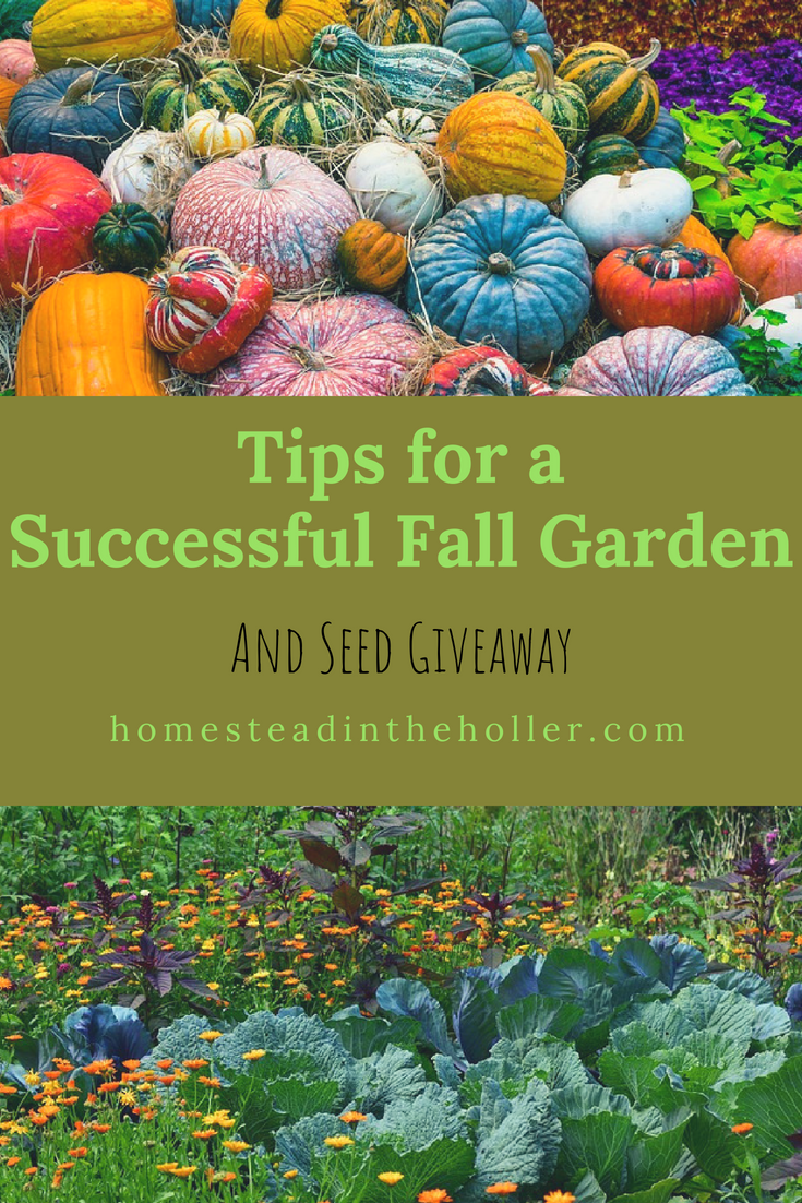 Tips for a Successful Fall Garden.
