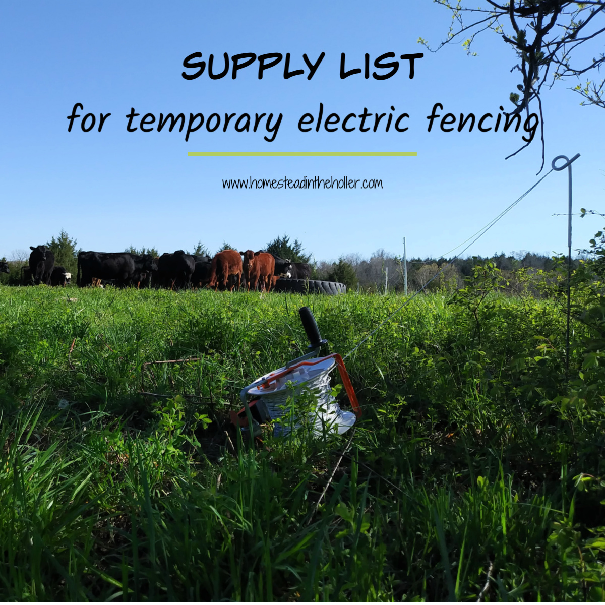 Electric fencing supplies - Homestead In The Holler