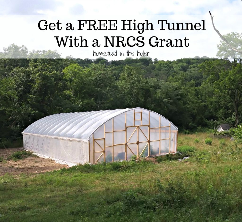 Get a free high tunnel with an NRCS grant