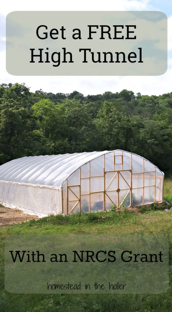 Get a free high tunnel with a NRCS grant